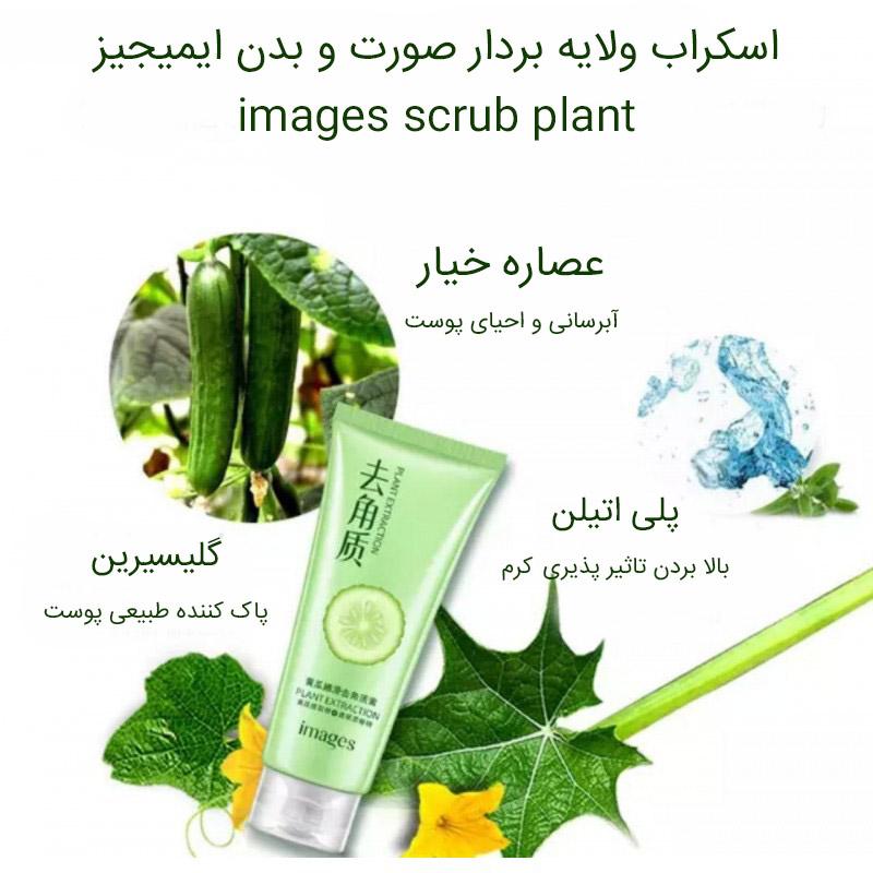 ا-images-scrub-plant